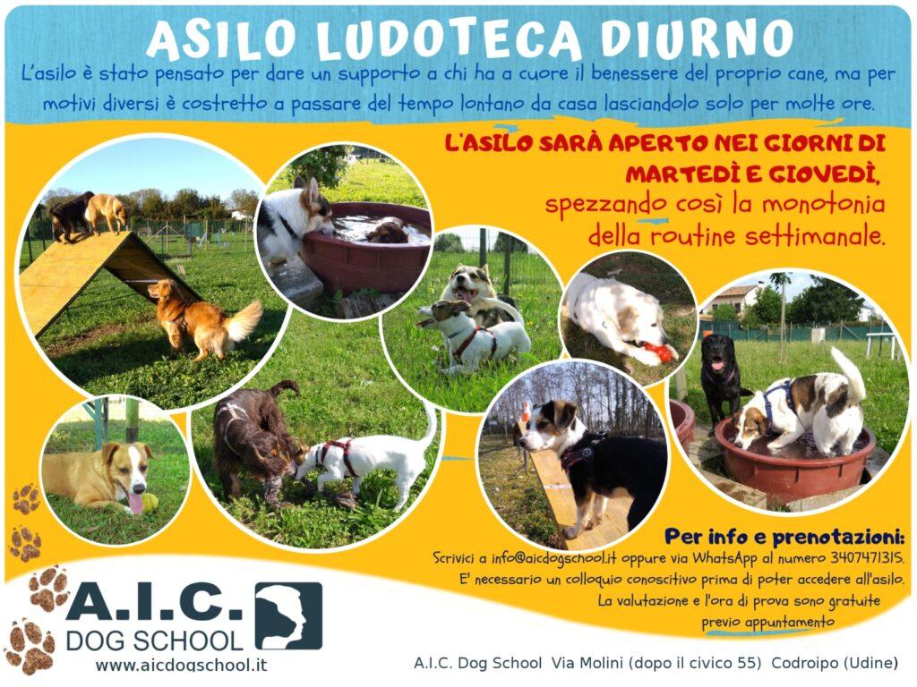 ASILO LUDOTECA